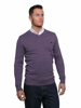 model wearing high quality purple v-neck jumper