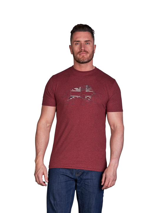model wearing high quality red embroidered t-shirt