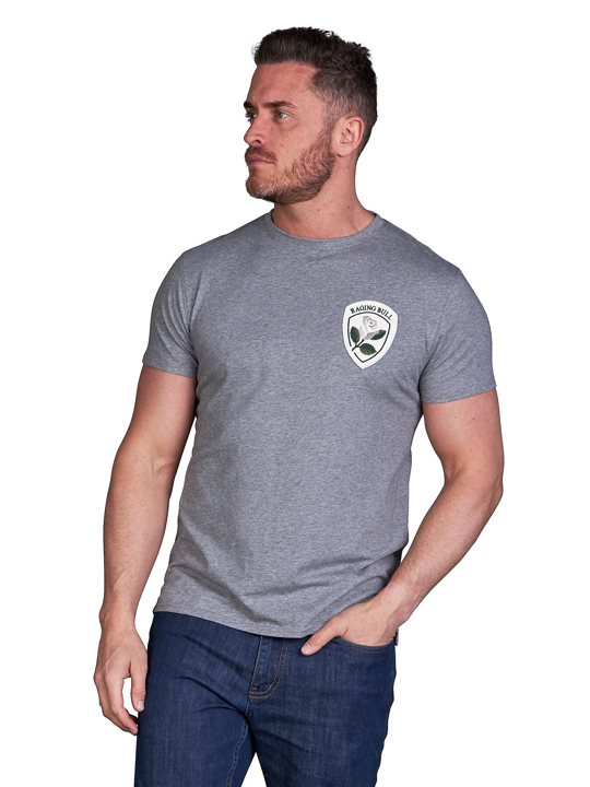 model wearing high quality crested grey t-shirt